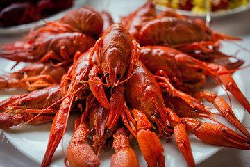 Самые интересные рецепты блюд из раков
