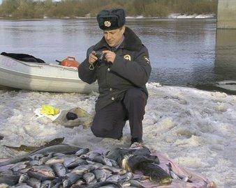 ОНФ в Башкирии участвовал в рейде на браконьеров