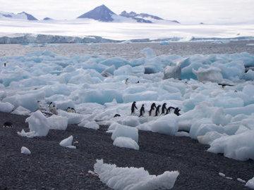 После таяния ледников в Арктике открыли новые острова