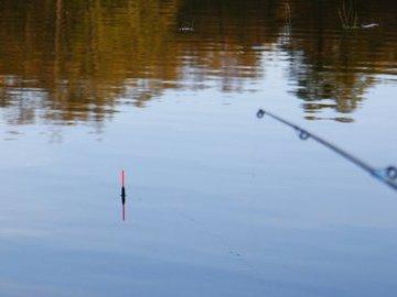 Как правильно подобрать удочку для начинающих рыбаков?
