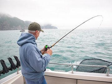 Подсластители на рыбалке