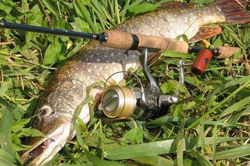 Полезные рекомендации рыбаку (часть 6)