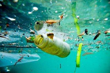 Ученые обнаружили пластик в море Лаптевых