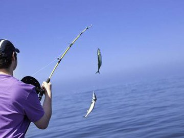 Полезные рекомендации рыбаку (часть 8)